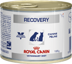 Royal Canin Recovery Wet 12x195g